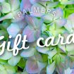 new_gift_card_2013_copy